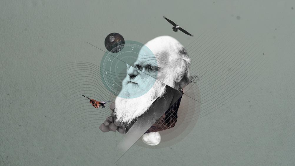 darwin_1.jpg