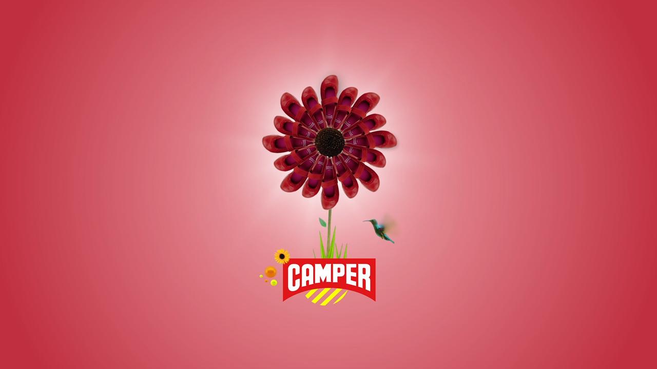cam_2.jpg
